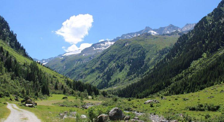 Zillergrund Wanderweg Sommer